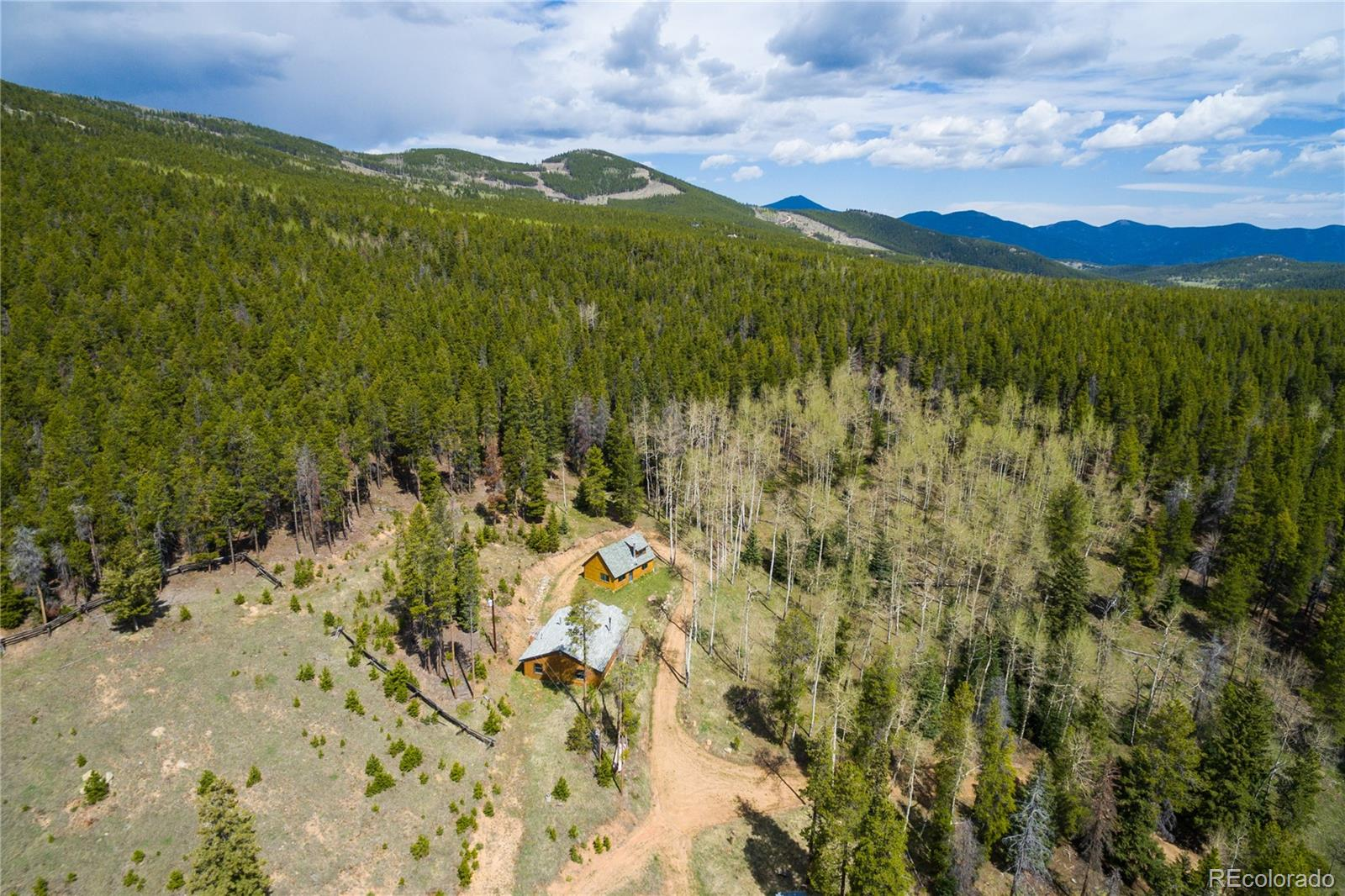 8683 Cub Creek Trail Property Photo - Conifer, CO real estate listing