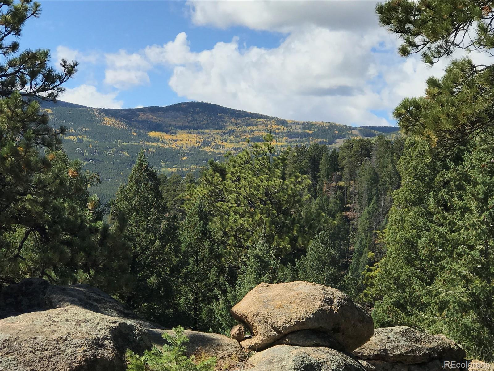 32734 Lodgepole Circle Property Photo - Evergreen, CO real estate listing