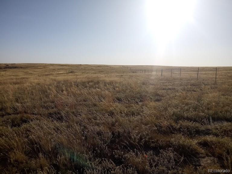 0 Private Road 104 Property Photo - Elbert, CO real estate listing
