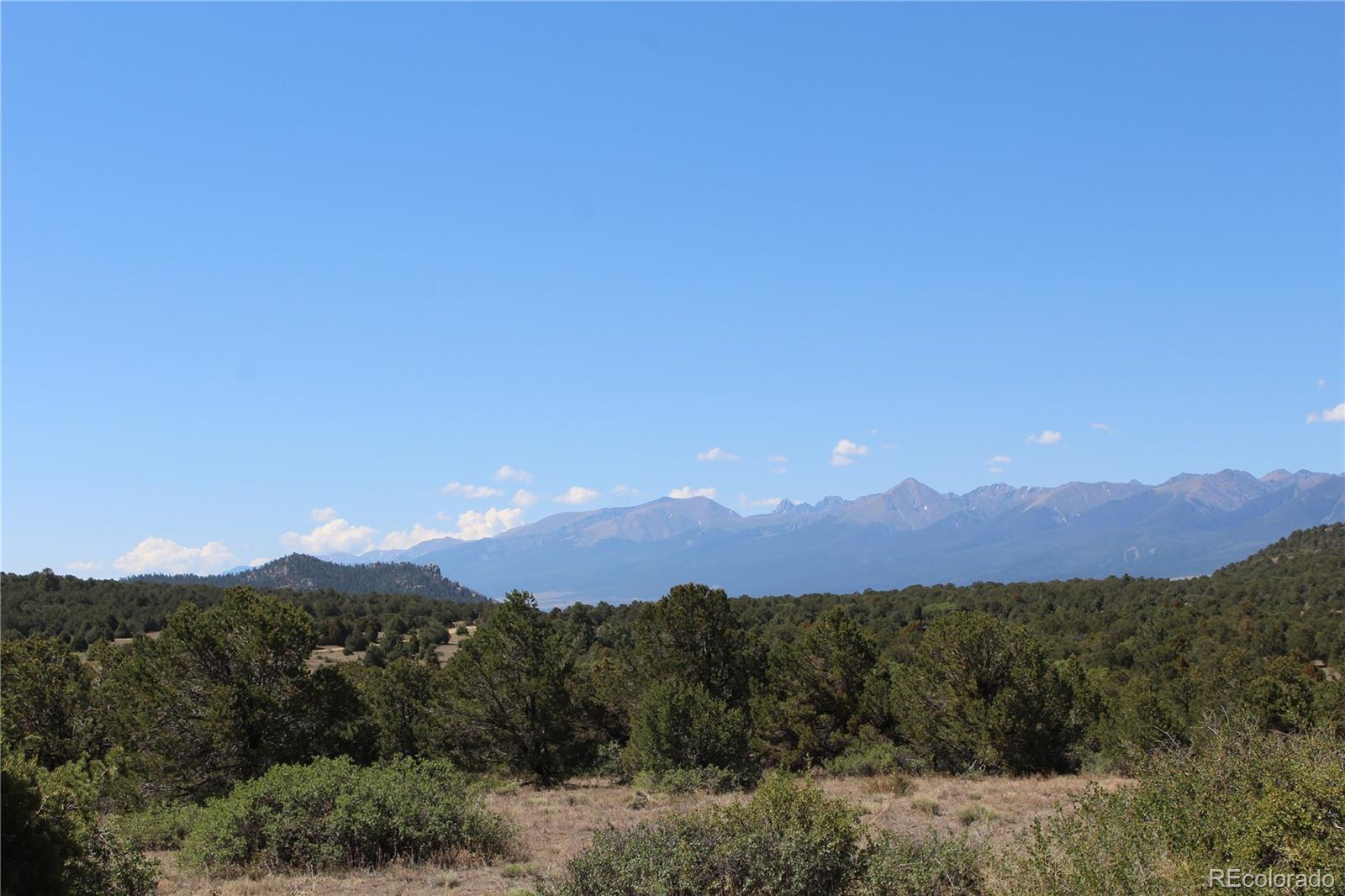 746 Mears Road Property Photo - Cotopaxi, CO real estate listing