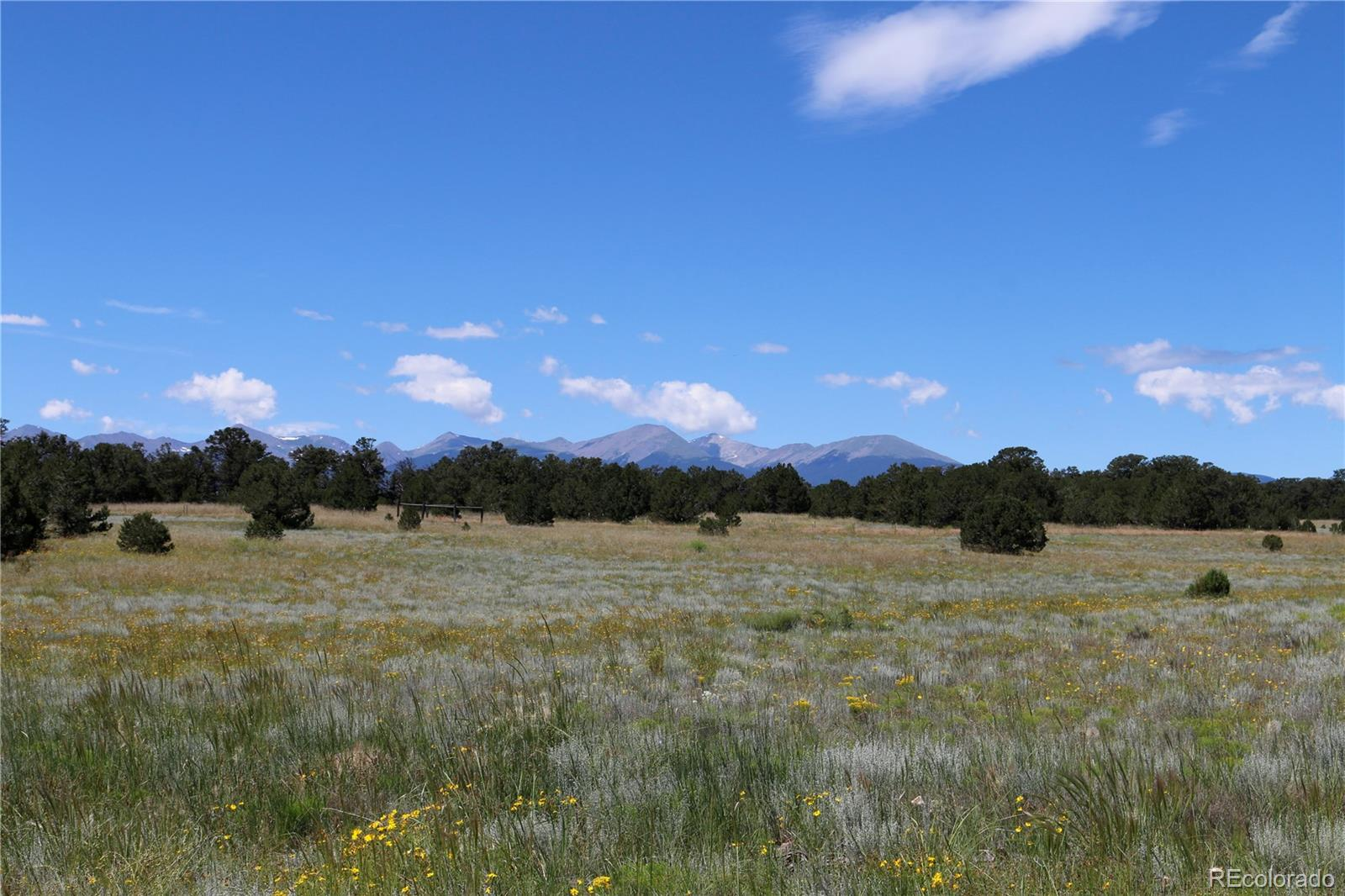 Gulch Road Property Photo - Cotopaxi, CO real estate listing