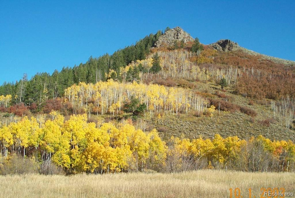 23545 Stagehorn Trail Property Photo - Oak Creek, CO real estate listing