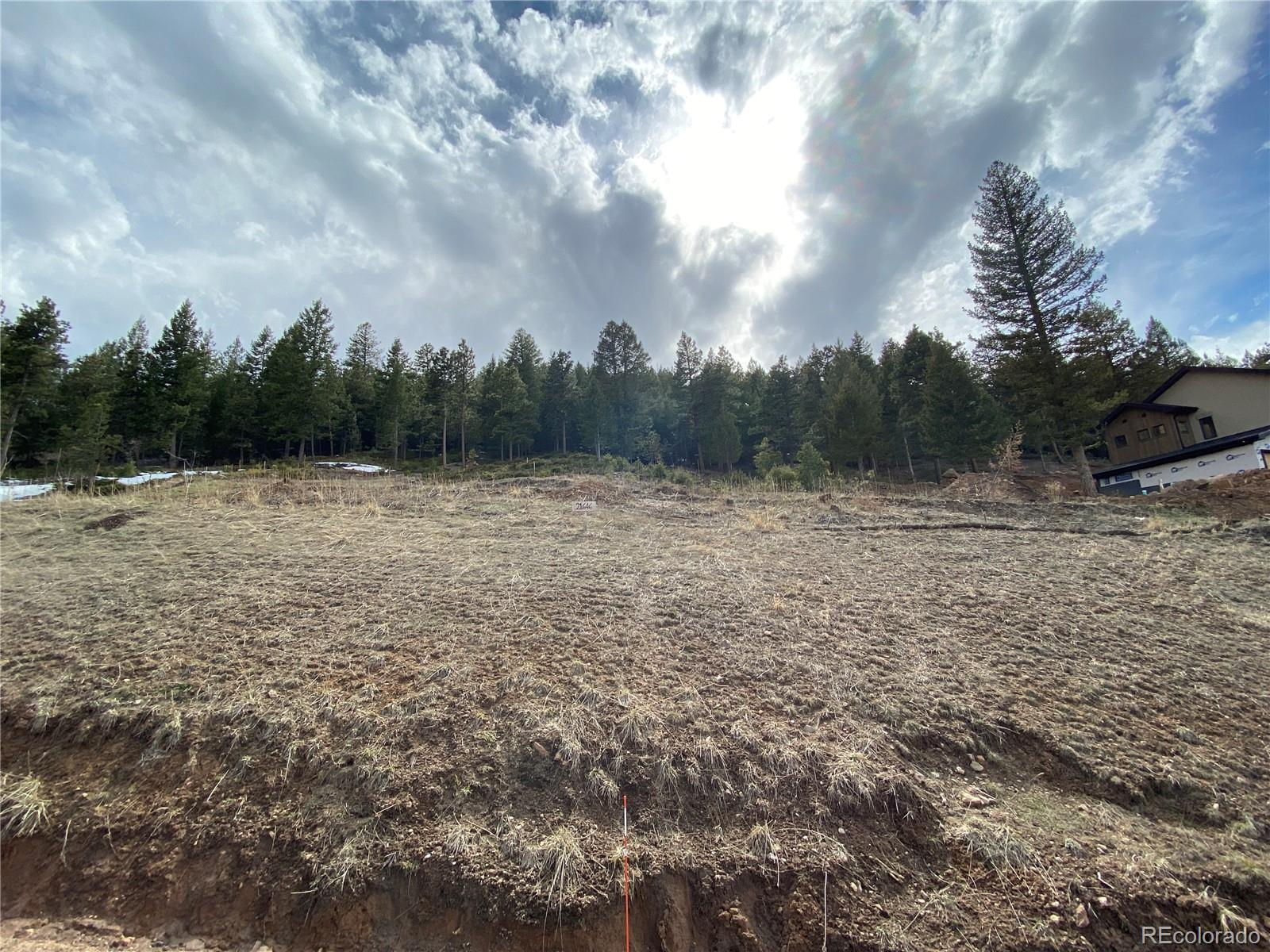 21646 Lucky Star Drive Property Photo - Morrison, CO real estate listing