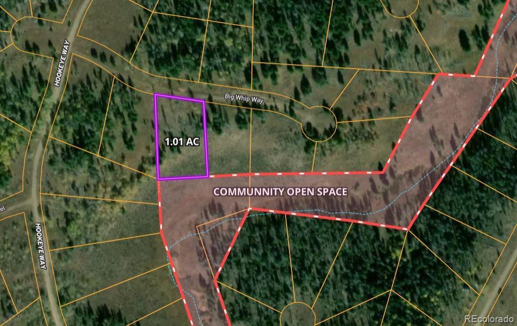 Lot 163 Big Whip Way Property Photo - Oak Creek, CO real estate listing