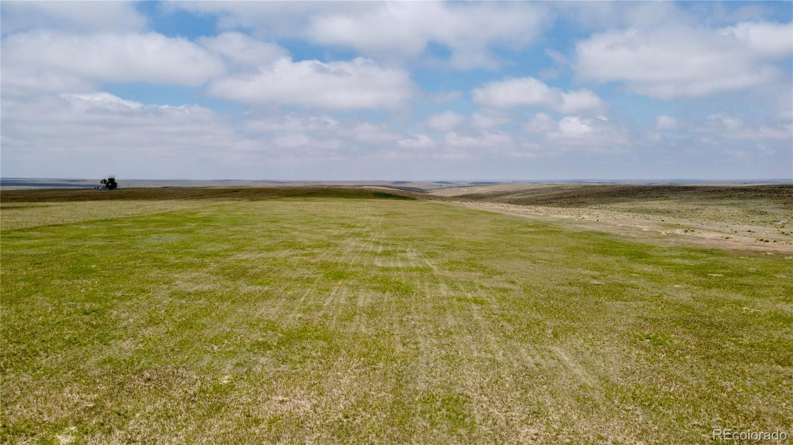 0003 County Road 166 Property Photo - Agate, CO real estate listing