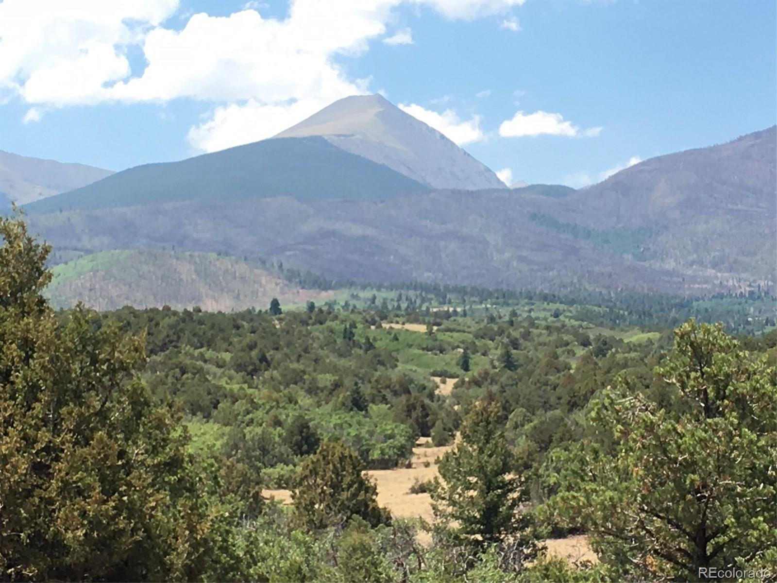000 Cottonwood Trail Property Photo - Cotopaxi, CO real estate listing