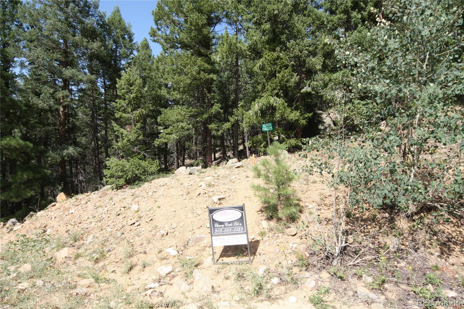 Elk Mountain Trail, Littleton, CO 80127 - Littleton, CO real estate listing