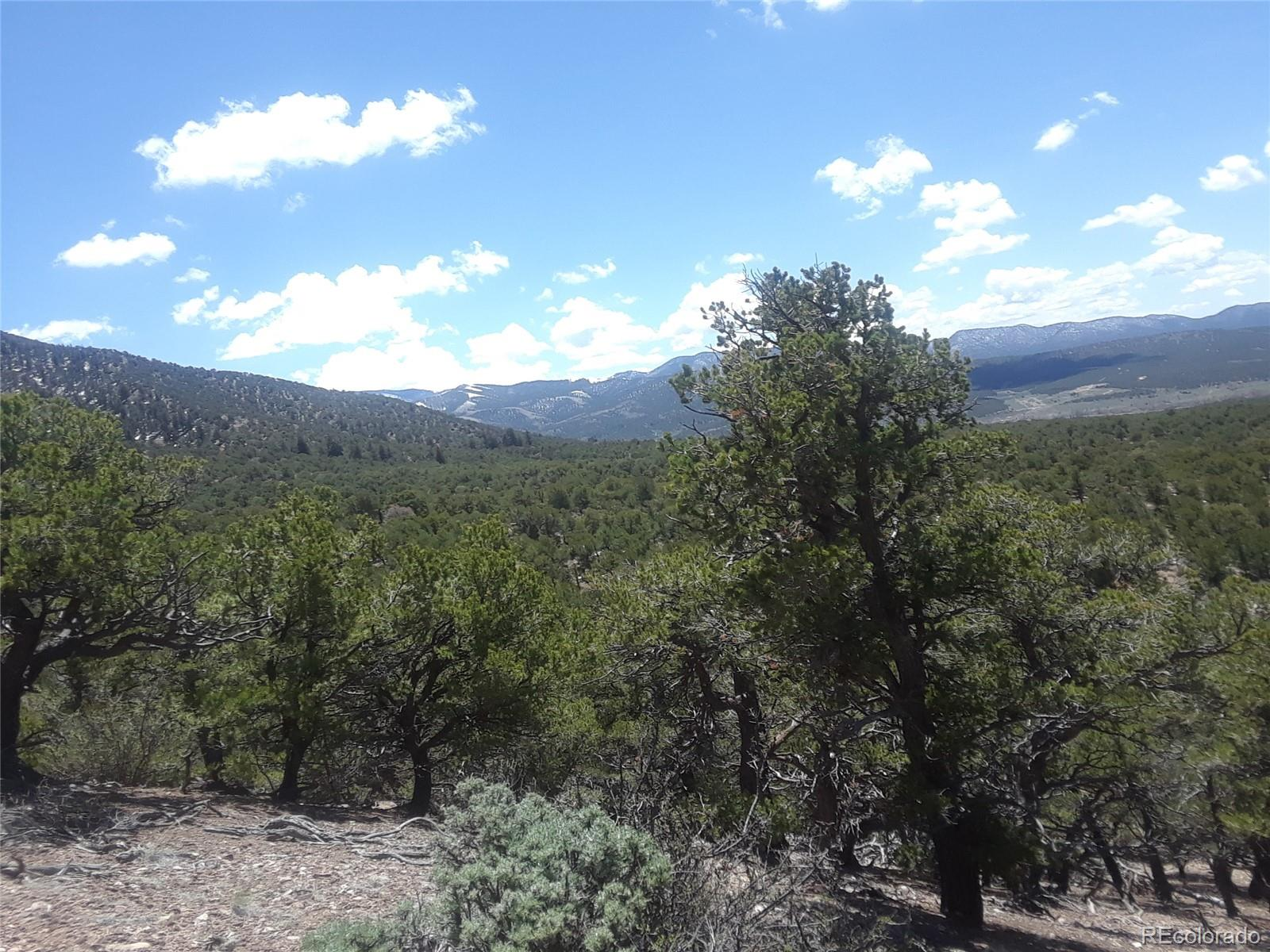 TBD Alligood Road Property Photo - Fort Garland, CO real estate listing
