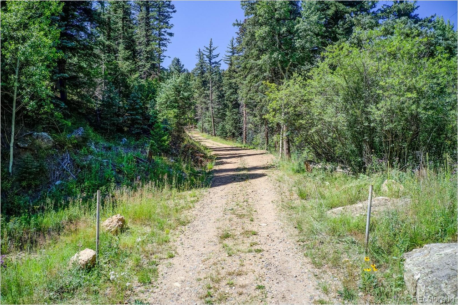 2965 Witter Gulch Road, Evergreen, CO 80439 - Evergreen, CO real estate listing