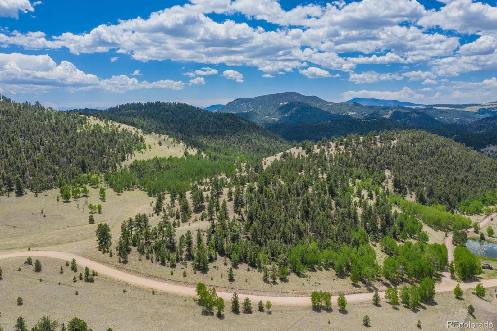 1306 County Road 122 Property Photo - Guffey, CO real estate listing