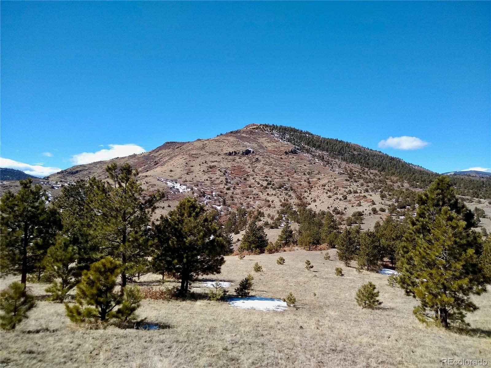 County 21A Road Property Photo - Canon City, CO real estate listing