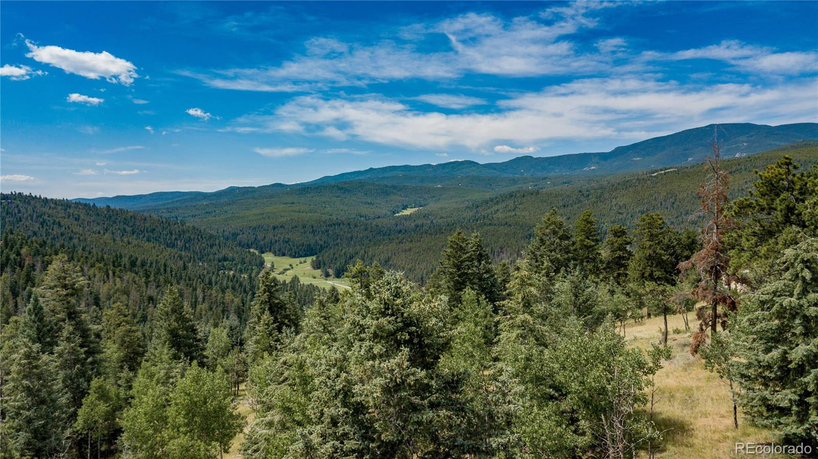 29653 Meadow Spur Lane Property Photo - Evergreen, CO real estate listing