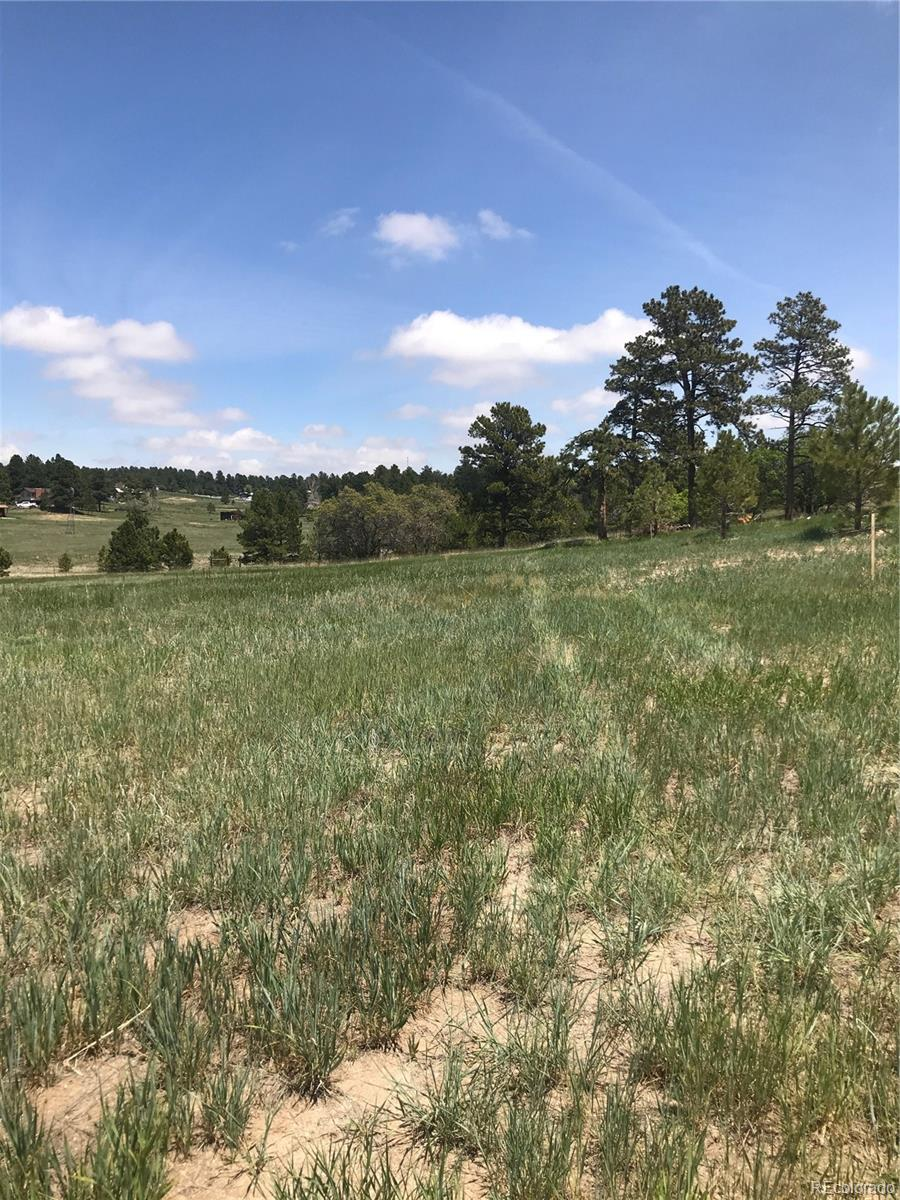 2552 Fox View Trail Property Photo - Franktown, CO real estate listing