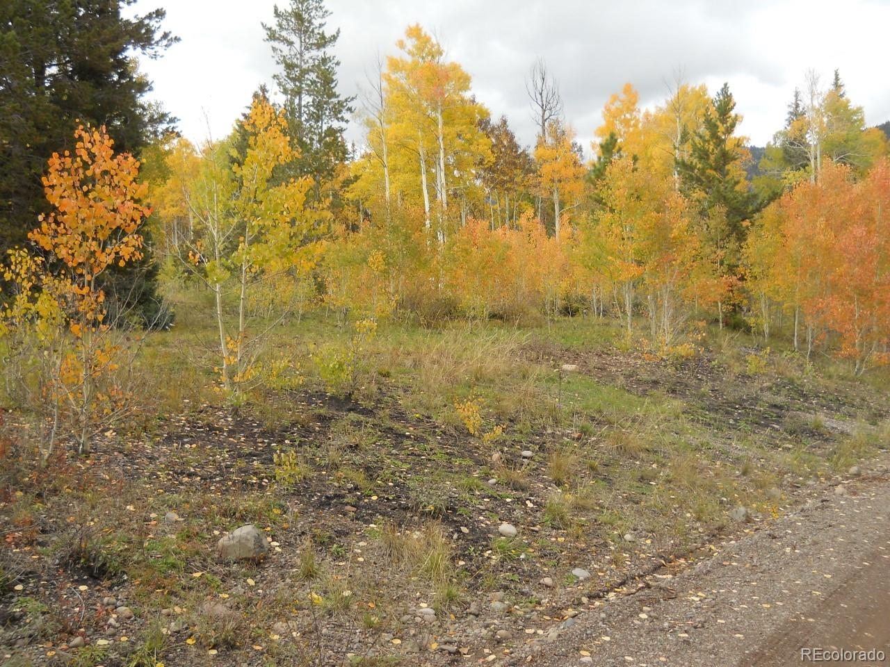 River Run Dr Drive Property Photo - Antonito, CO real estate listing