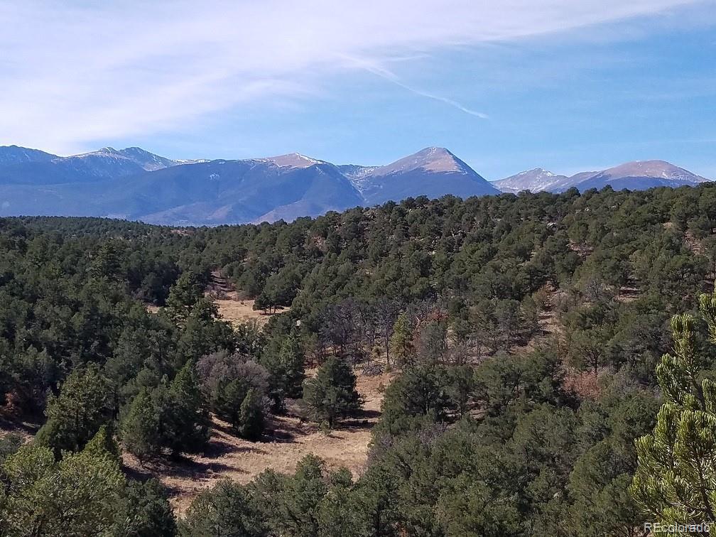 1141 Prayer Mountain Pass Property Photo - Cotopaxi, CO real estate listing