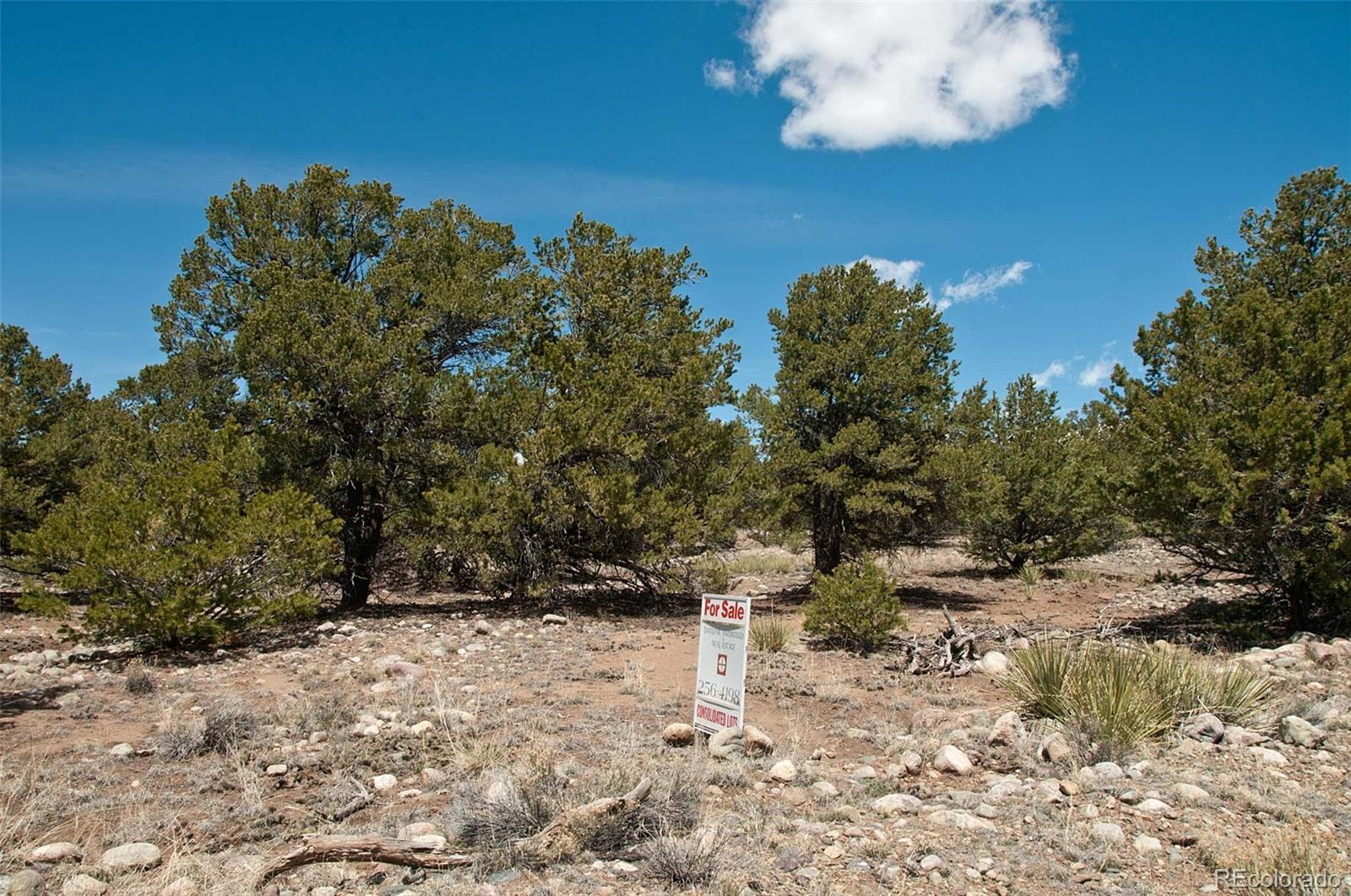 4112 Cordial Way Property Photo - Crestone, CO real estate listing