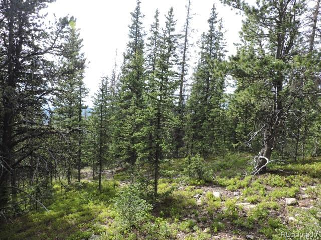 6626 Forbes Road Property Photo - Fort Garland, CO real estate listing