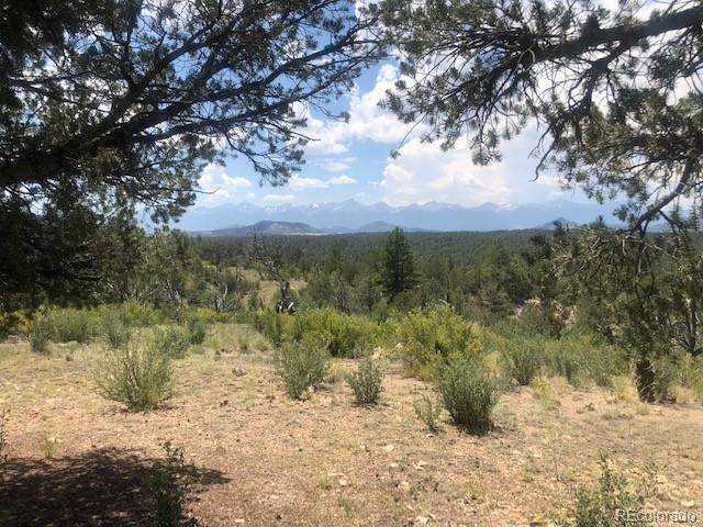 Mic Mac Rd Property Photo - Cotopaxi, CO real estate listing