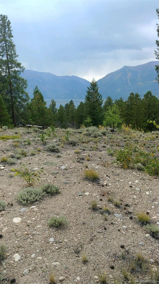Tract 1 Ross II Sub Property Photo - Twin Lakes, CO real estate listing
