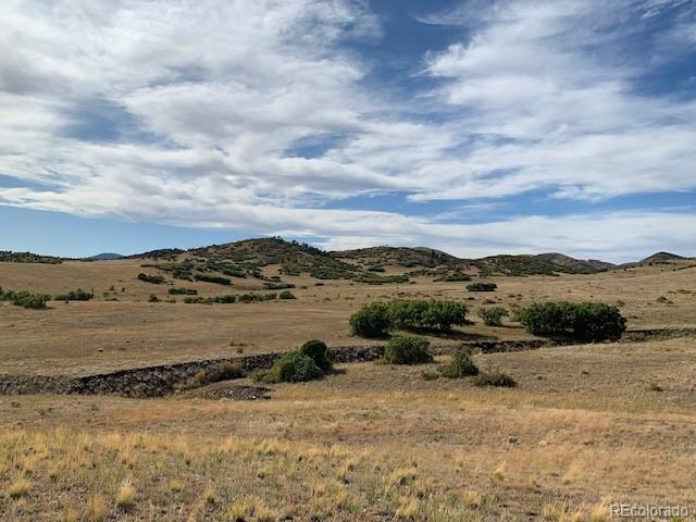 Achy Back Property Photo - Canon City, CO real estate listing