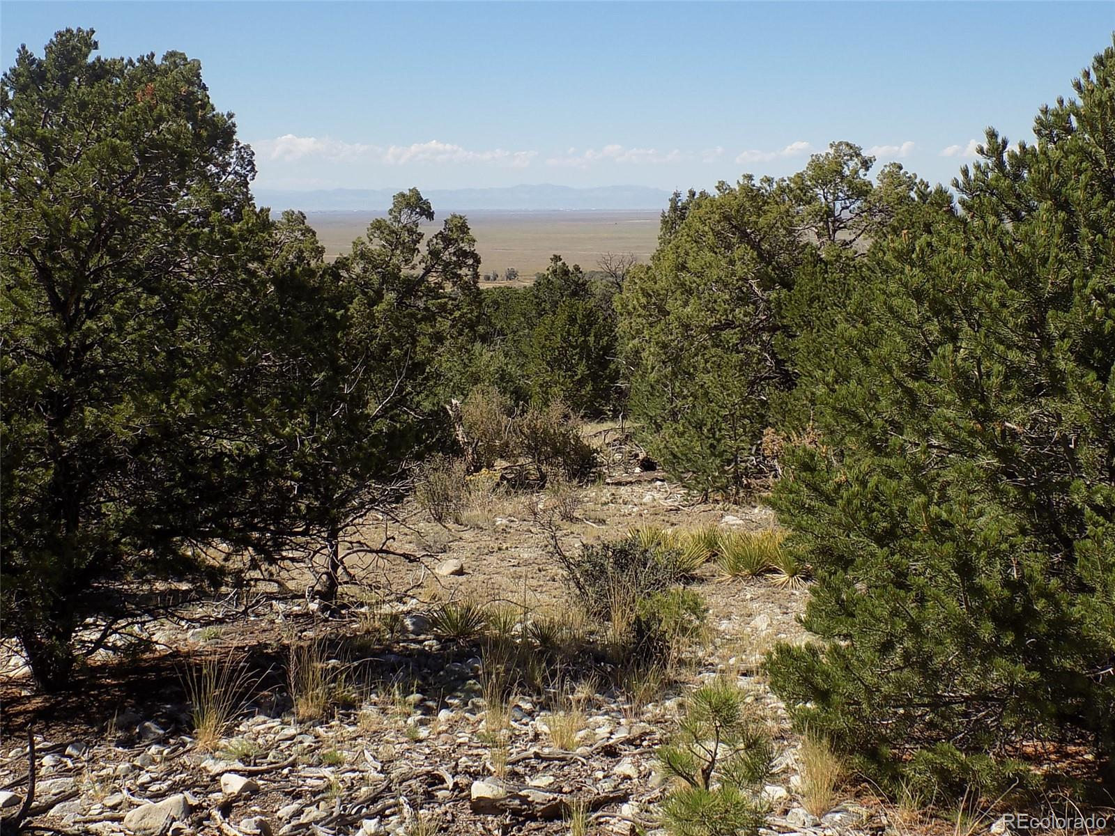Mill Run Road Property Photo - Mosca, CO real estate listing