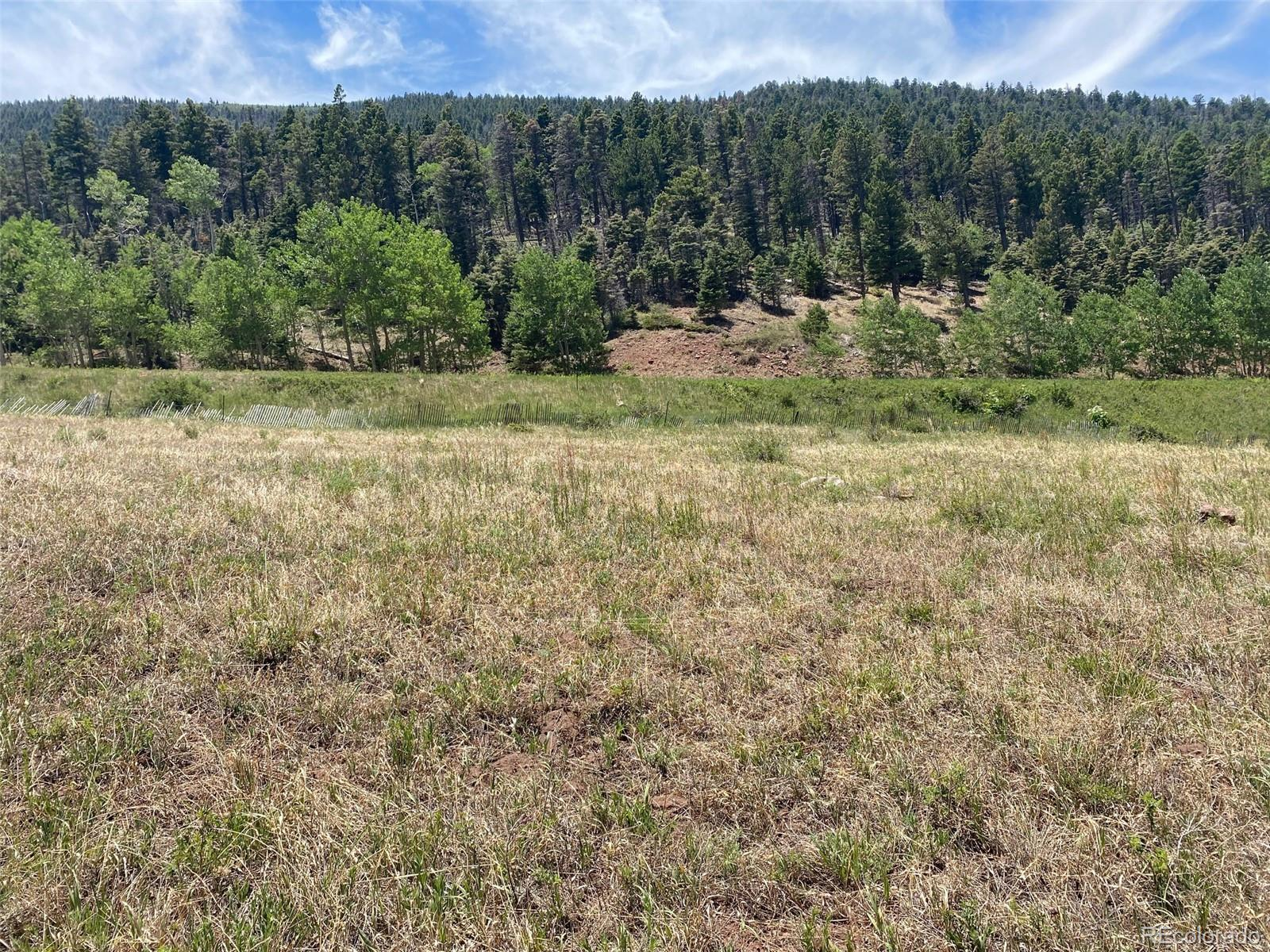 South Meadows Road Property Photo - Cuchara, CO real estate listing
