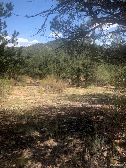 000 38th Trail Property Photo - Cotopaxi, CO real estate listing