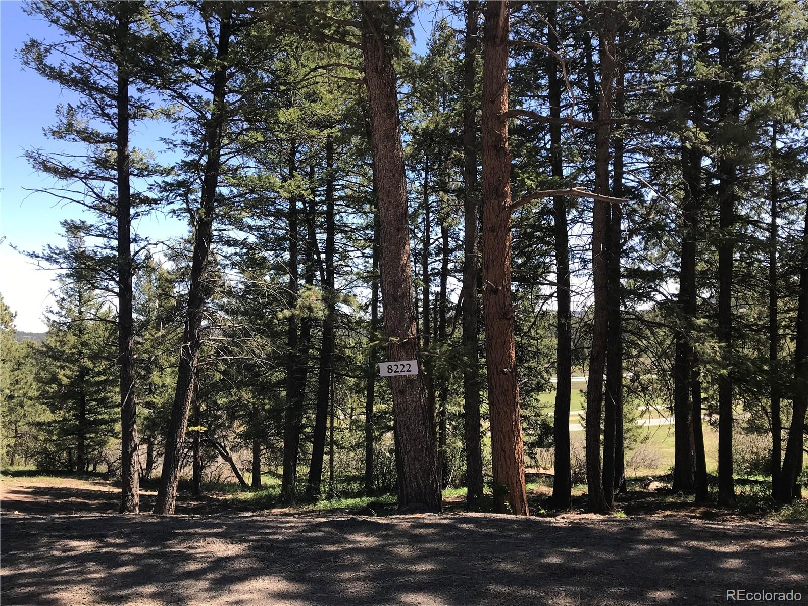 8222 Stags Leap Trail Property Photo - Morrison, CO real estate listing