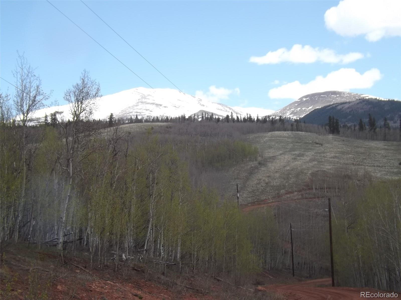 666 Palmer Peak Drive Property Photo - Fairplay, CO real estate listing