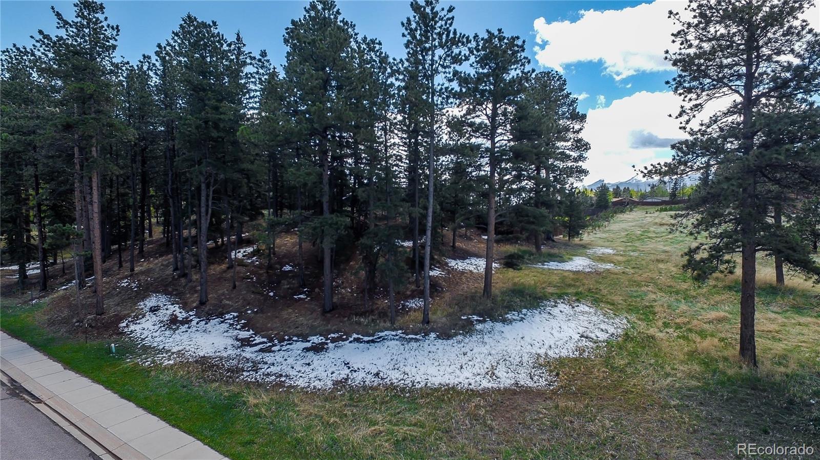 615 Meadowlark Lane Property Photo - Woodland Park, CO real estate listing