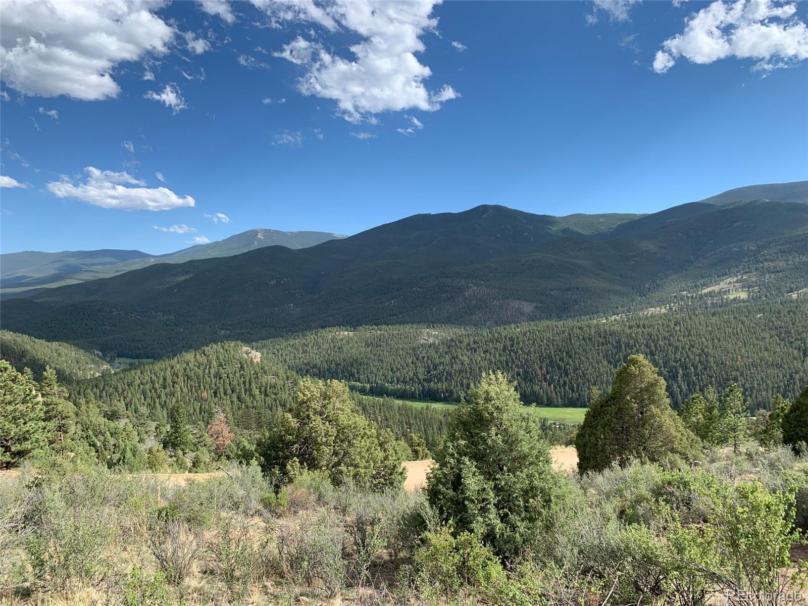 884 Pine Hollow Property Photo - Bailey, CO real estate listing