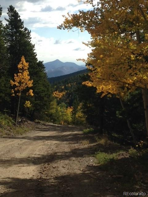 South Spring Gulch Property Photo - Idaho Springs, CO real estate listing