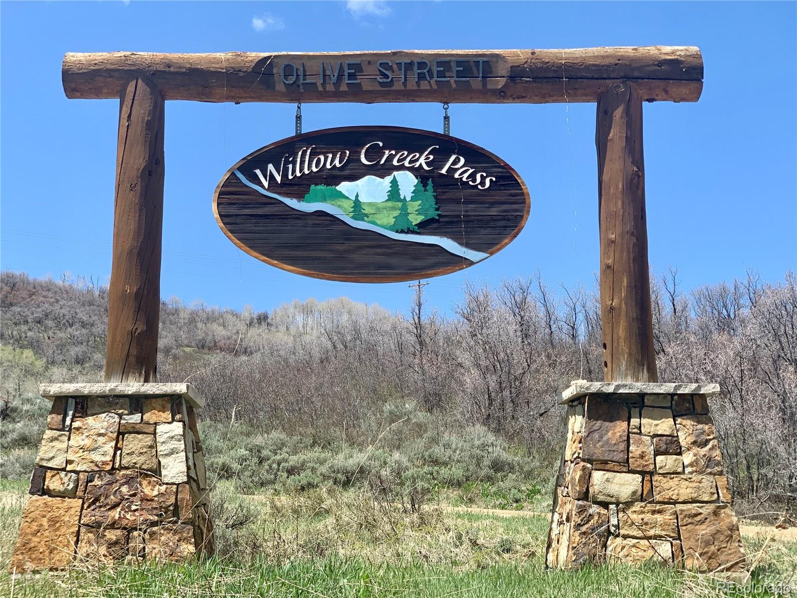 56500 Olive Street Property Photo - Clark, CO real estate listing