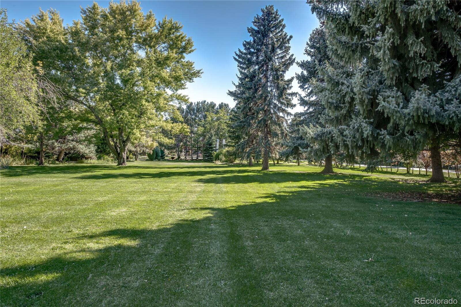 2050 S Newland Street, Lakewood, CO 80232 - Lakewood, CO real estate listing