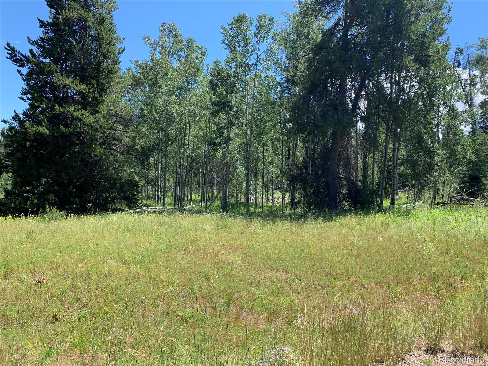 22320 Cheyenne Trail Property Photo - Oak Creek, CO real estate listing