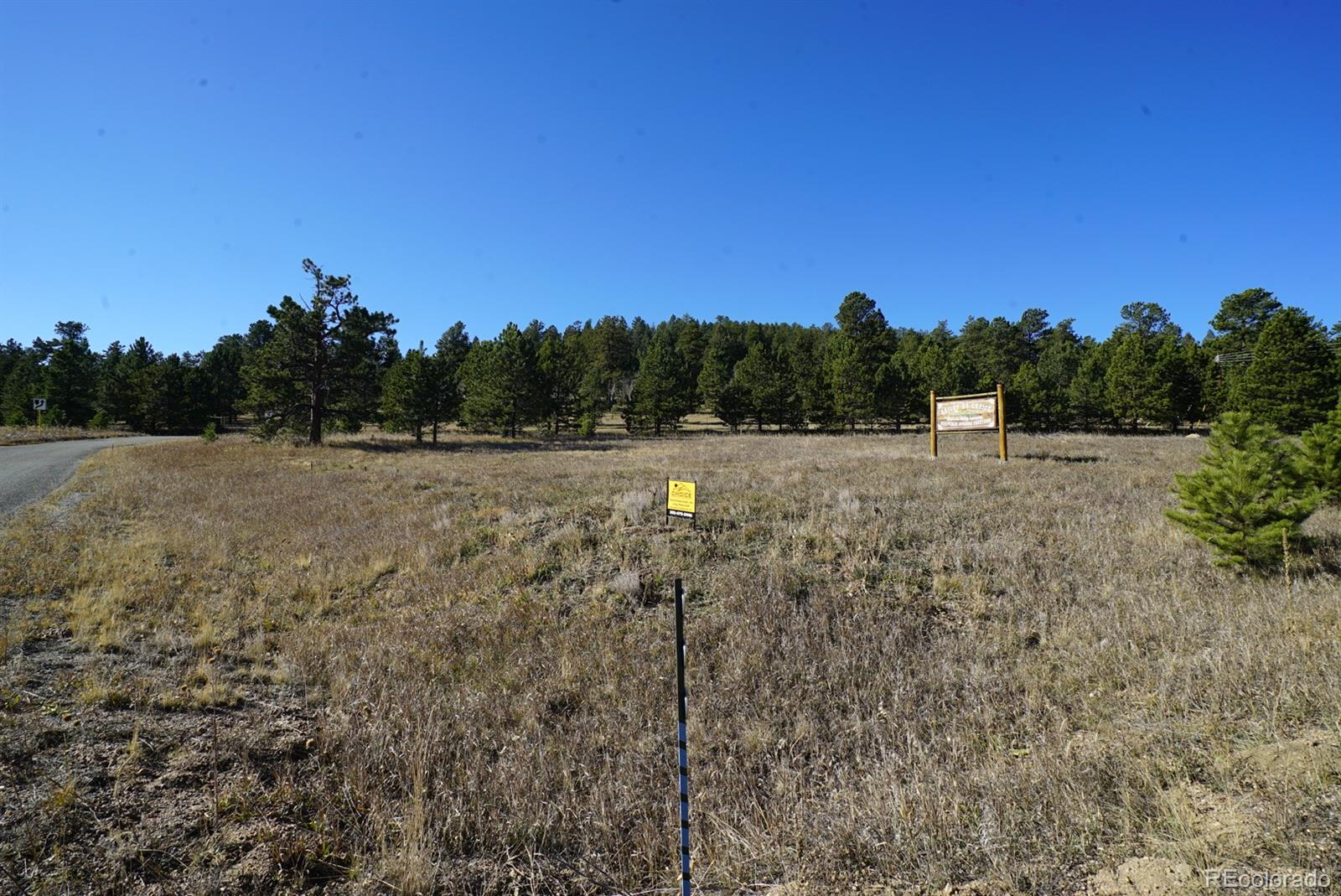 483 CR 43 A Property Photo - Bailey, CO real estate listing