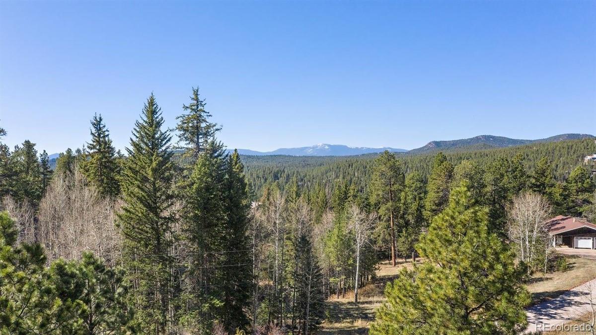 34667 Circle Drive Property Photo - Pine, CO real estate listing