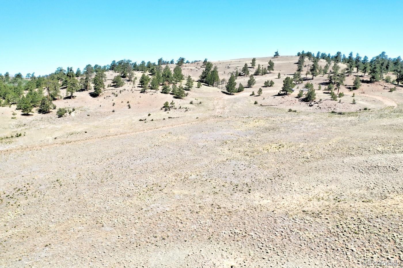 701 Eufaula Trail Property Photo - Hartsel, CO real estate listing