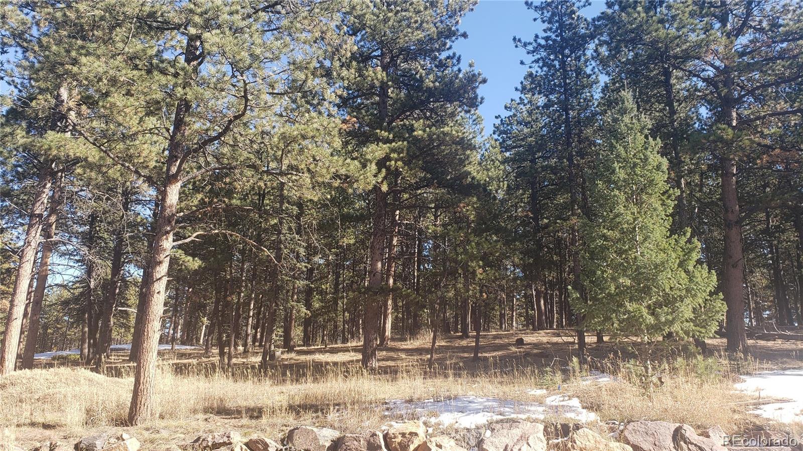 Eagle Pines Real Estate Listings Main Image