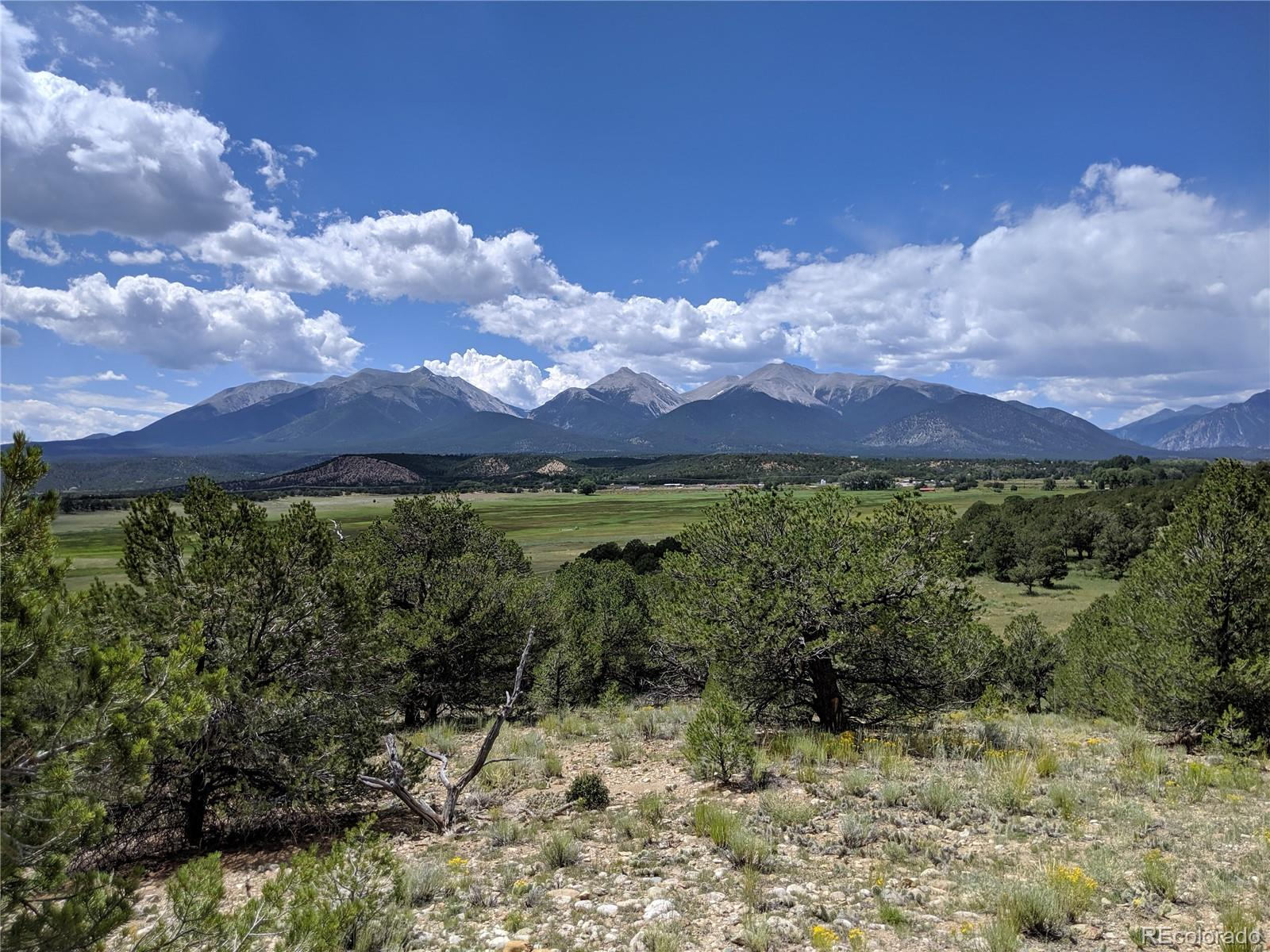 Lot 16 Property Photo - Nathrop, CO real estate listing