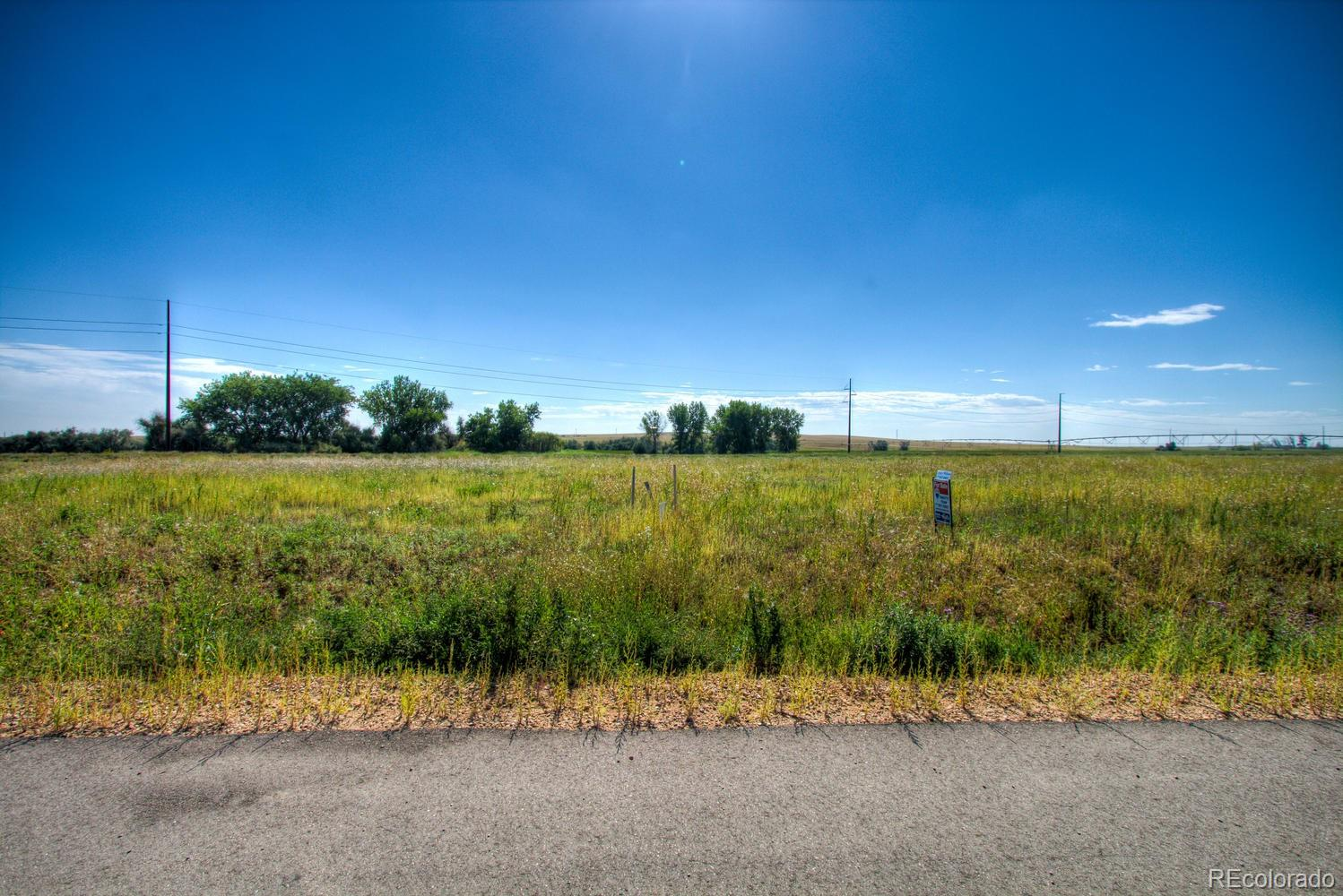 9420 Meadow Farms Drive Property Photo - Milliken, CO real estate listing