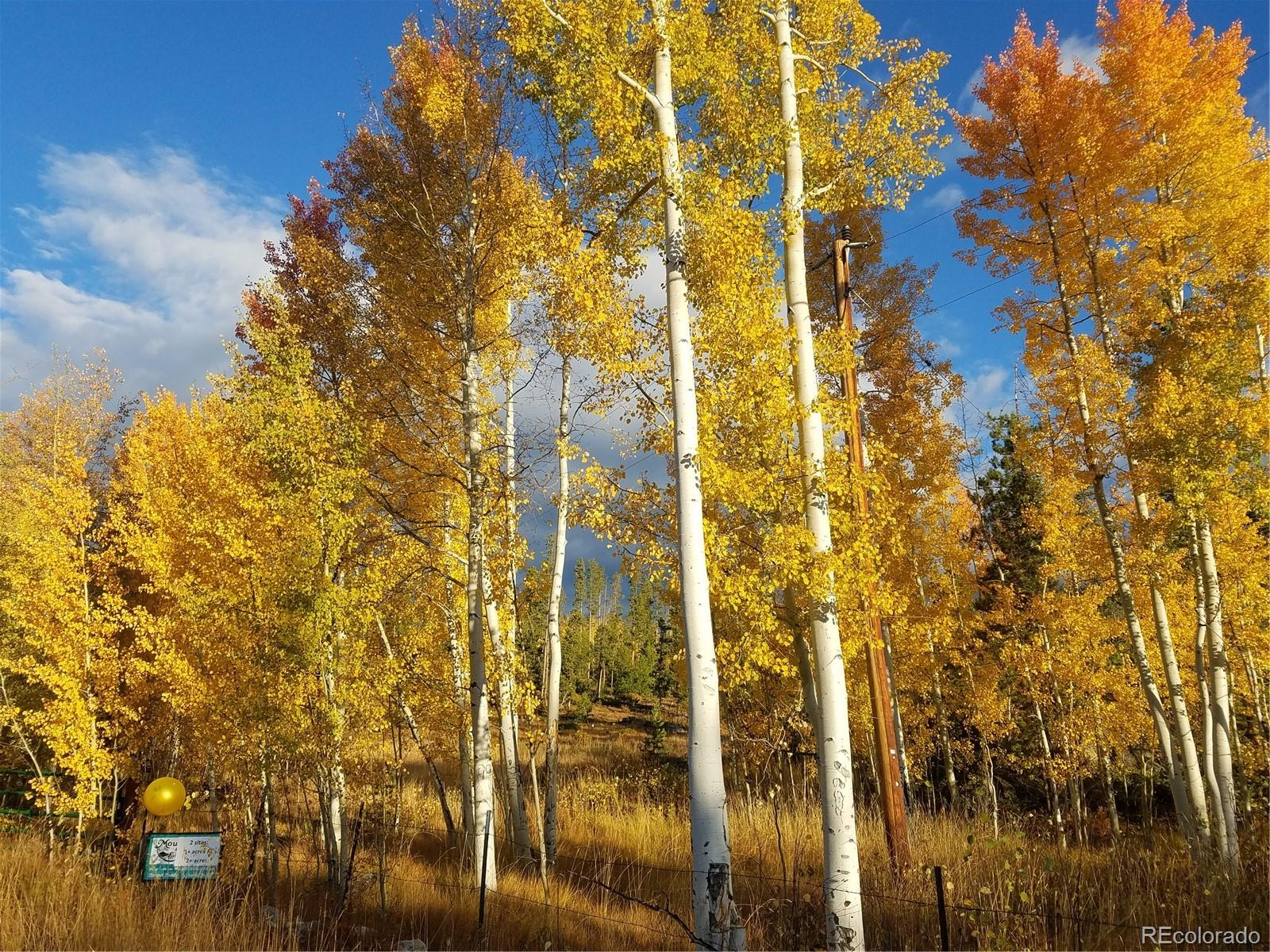 13221 US Hwy 34 Property Photo - Grand Lake, CO real estate listing