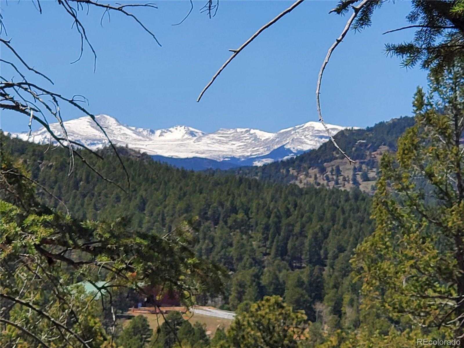 7263 Plowsher Way Property Photo - Morrison, CO real estate listing