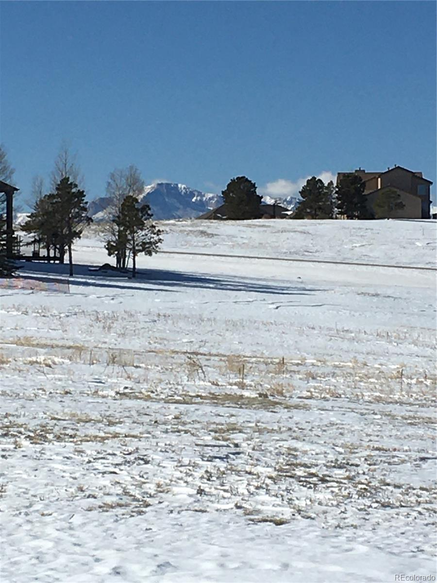 1635 Kings Cross Lane Property Photo - Monument, CO real estate listing