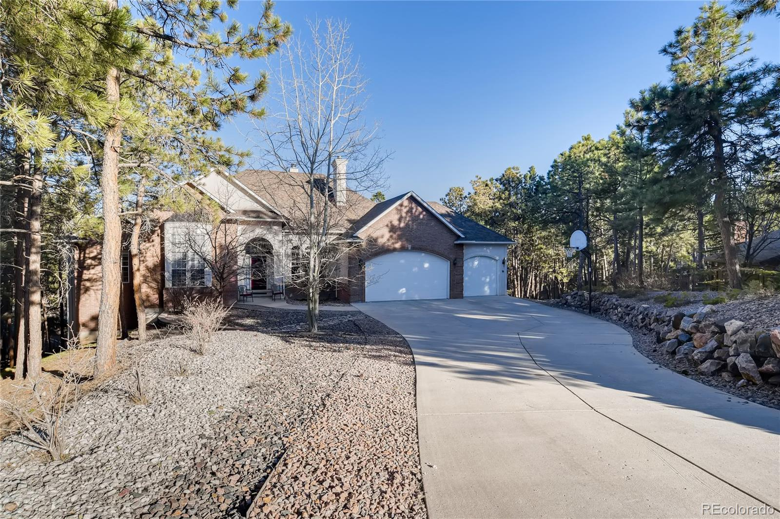 205 Blue Garter Way Property Photo - Monument, CO real estate listing