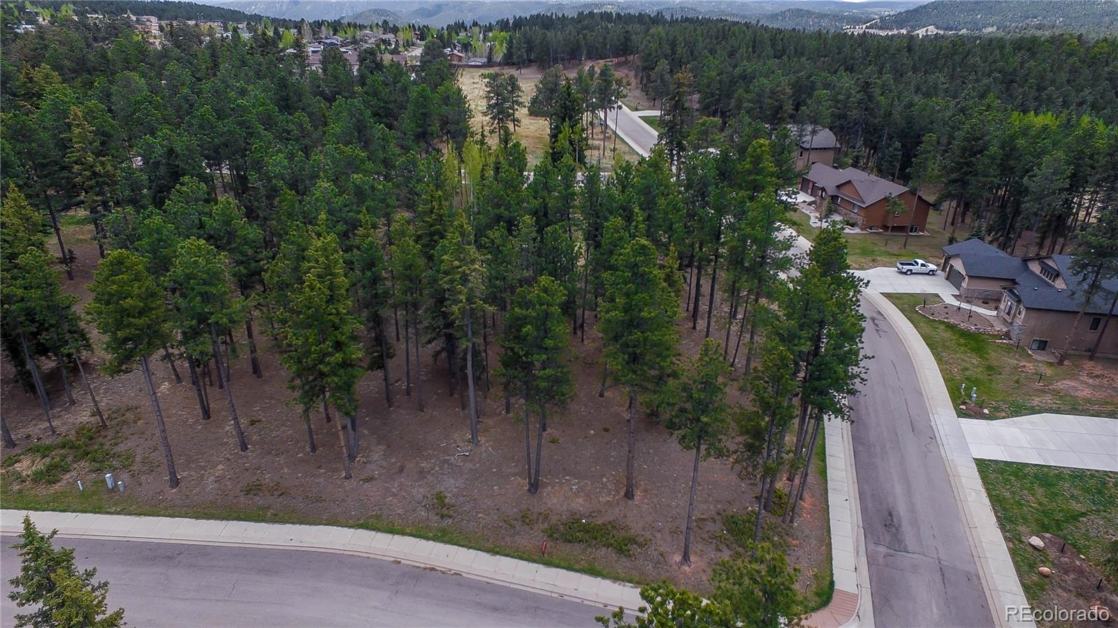 605 Chipmunk Drive Property Photo - Woodland Park, CO real estate listing