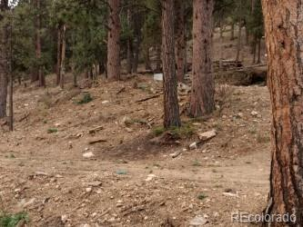 22 High View Lane Property Photo - Bailey, CO real estate listing