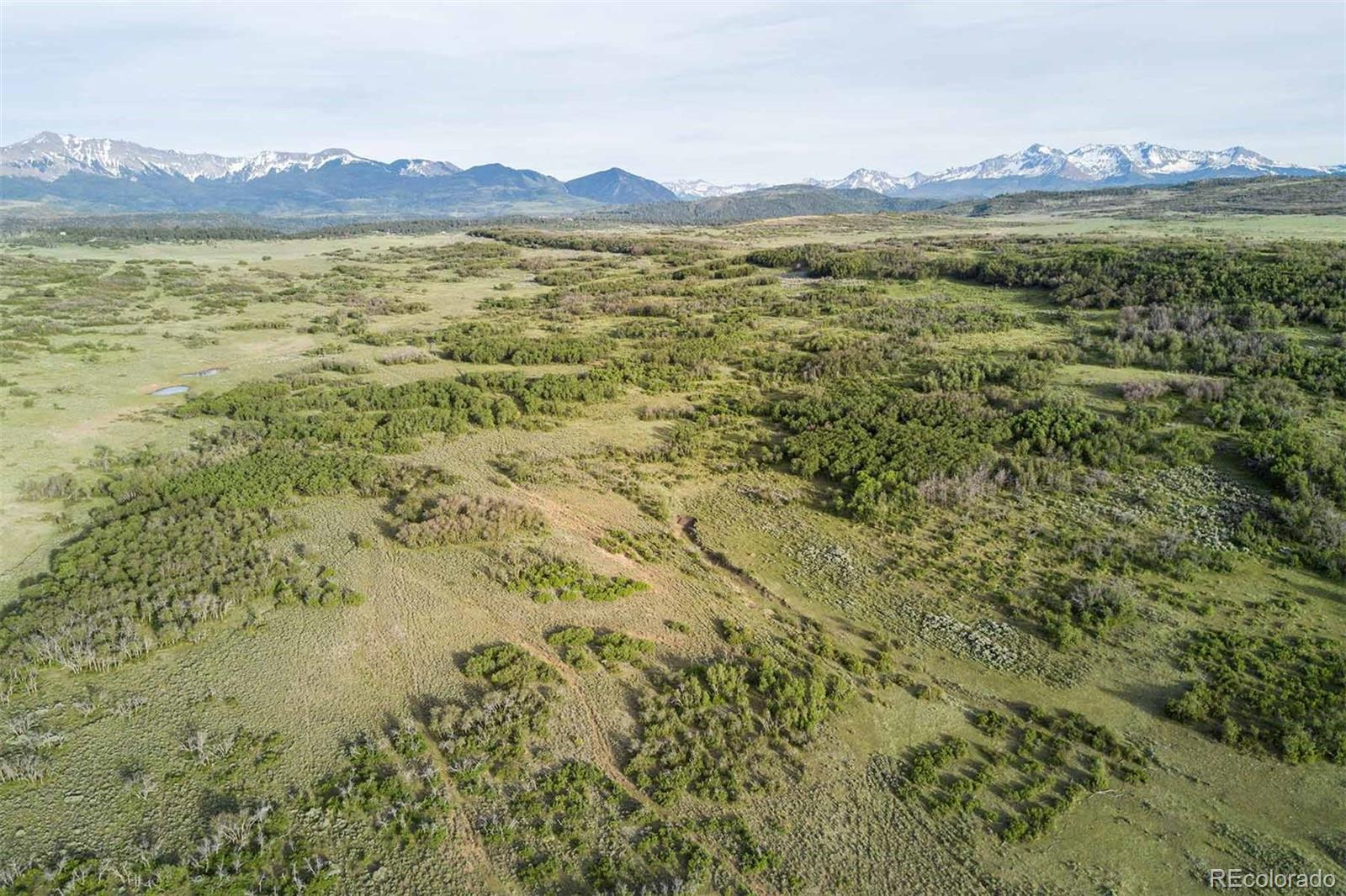 2920 County Road X48 Property Photo - Telluride, CO real estate listing