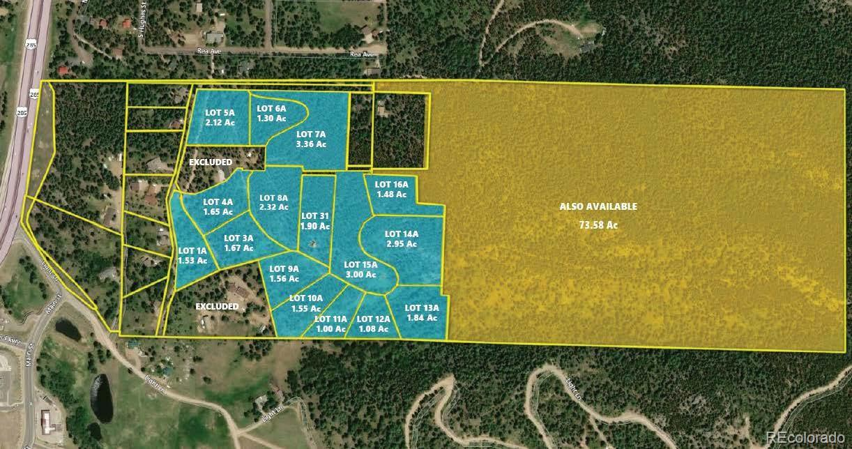 Rea Avenue Property Photo - Conifer, CO real estate listing