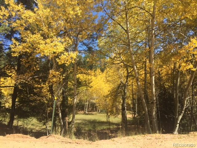 430 Pinon Lane Property Photo - Florissant, CO real estate listing